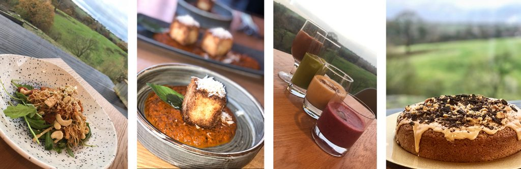 Banner image of vegan meals and drinks